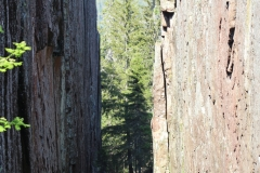 Wanderung durch den Nationalpark Skuleskogen.