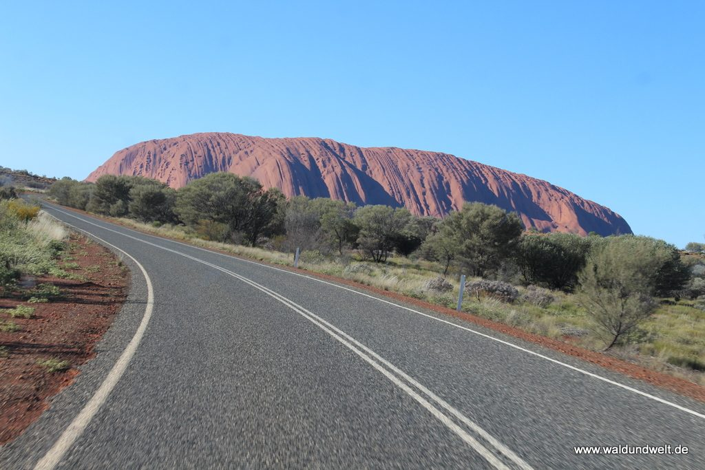 Unterwegs am Uluru