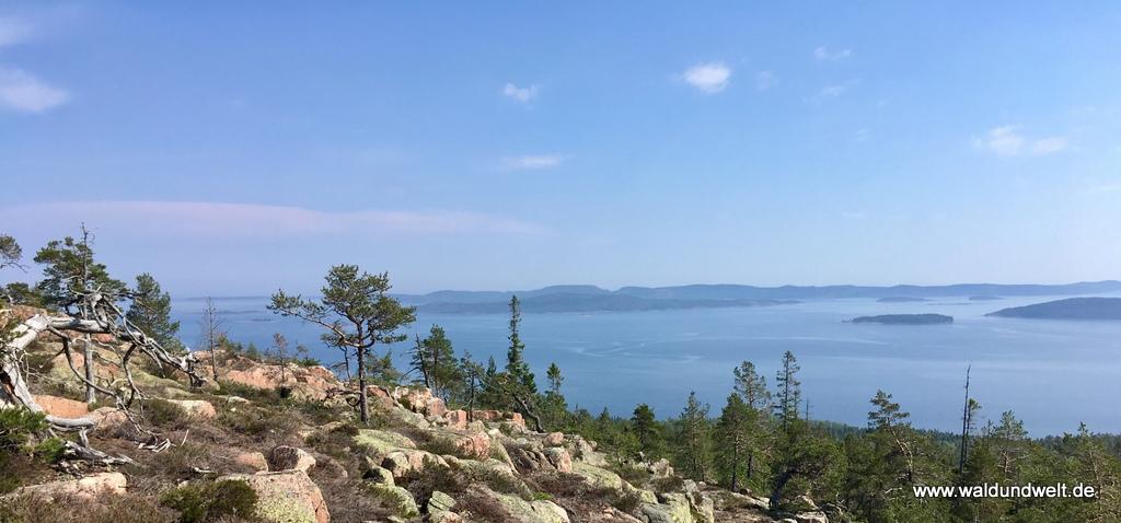 Wanderung im Nationalpark Skuleskogen in Schweden