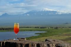 Amboseli Nationalpark  in Bildern - Safari in Kenia
