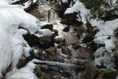 Der Seebach entspringt dem Rachelsee