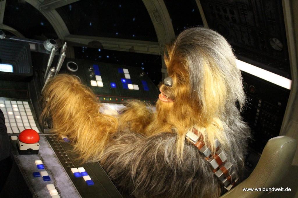 ... und Chewbacca steuert derweil den Millenium Falken.