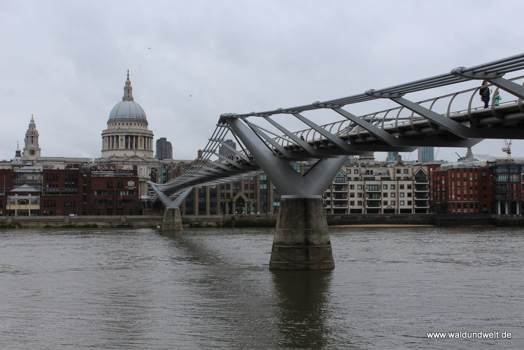 St. Paul's Cathedral mit Millenium Bridge am Tag.