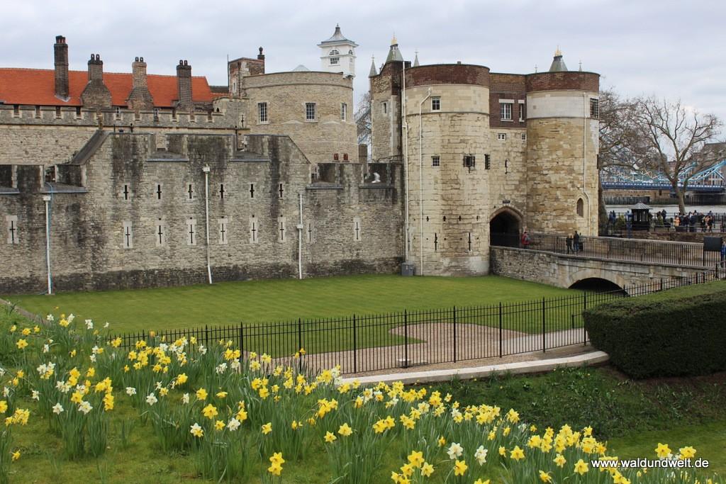 Der Haupteingang zum Tower of London wird von Blumen flankiert.
