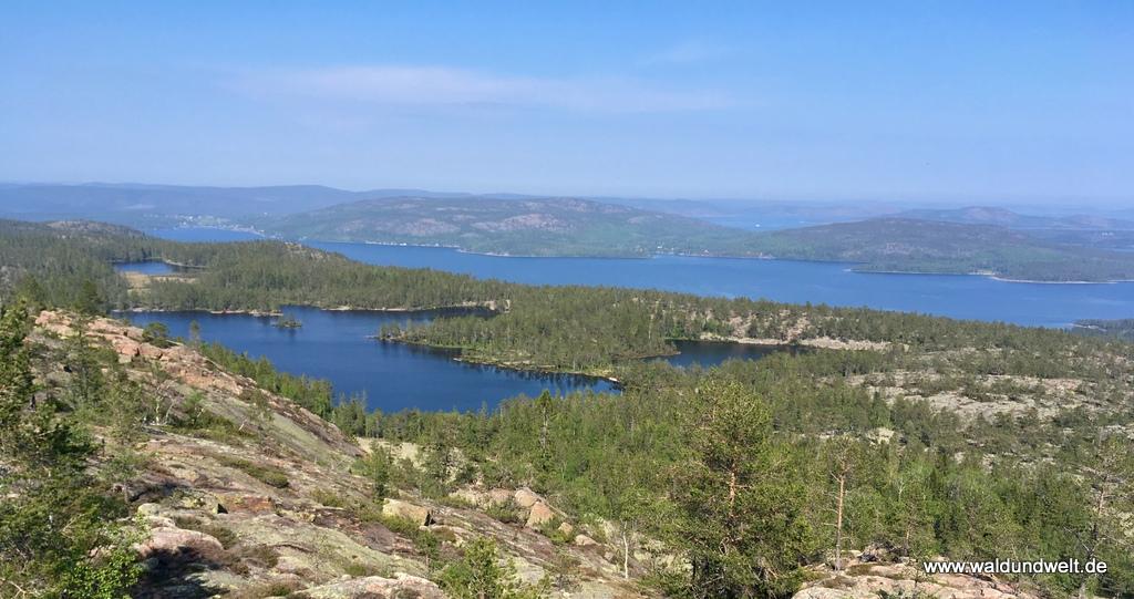 Aussicht im Nationalpark Skuleskogen auf die Ostsee
