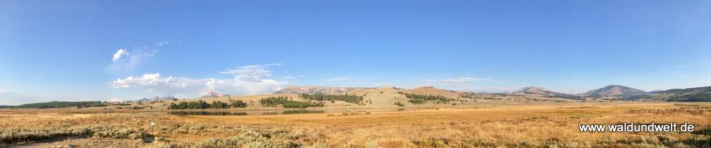 Weite Landschaft im Yellowstone Nationalpark.