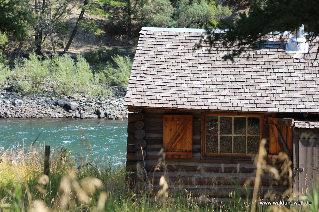 Blacktail Cabin.